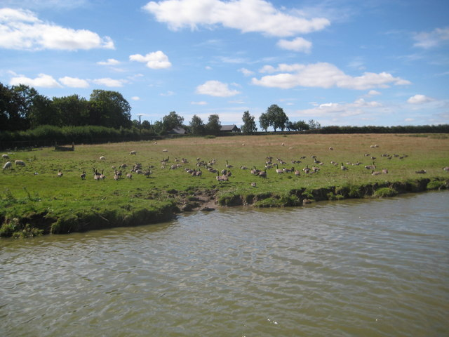Grand Union Canal: Farmland near Grove