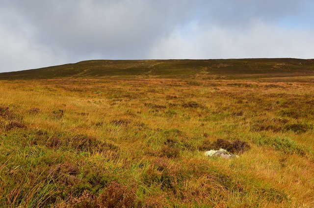 Southwest slope of Meall an Lundain