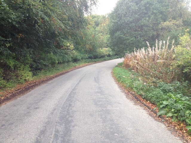 Minor road near Muir of Ord