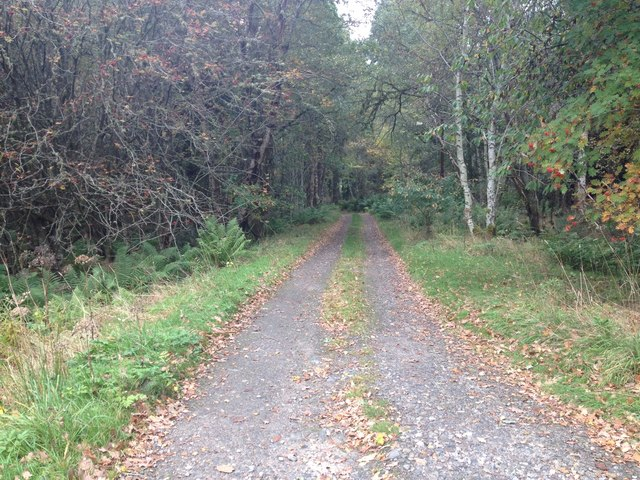 Track to Oldmill