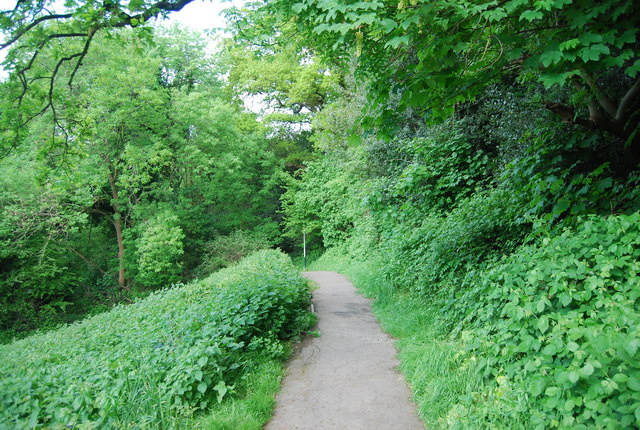 Footpath from Rusthall