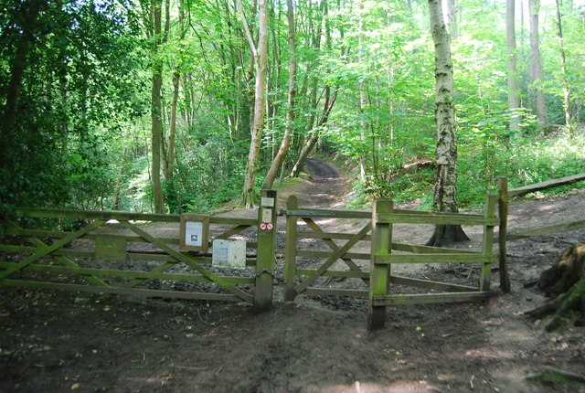 Entering Hurst Wood