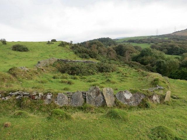 Tir Caeedig Craig y Perchyll Enclosure