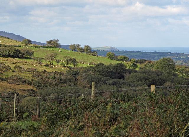 Marginal fields: Eglwyswen