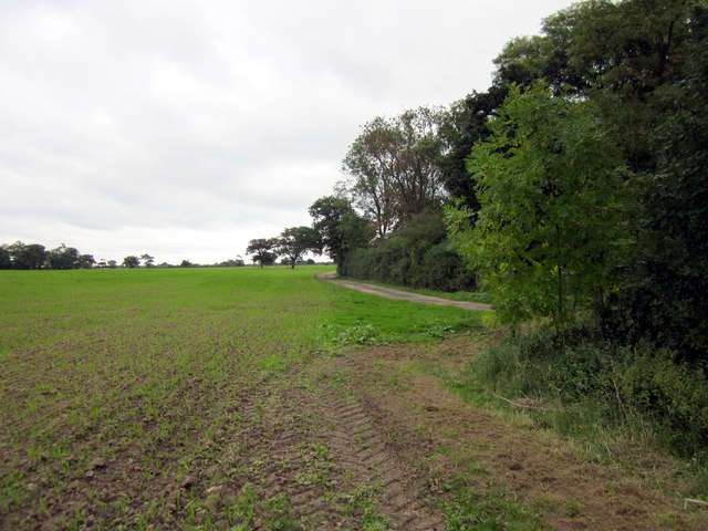 View from the Bishop Bennet Way