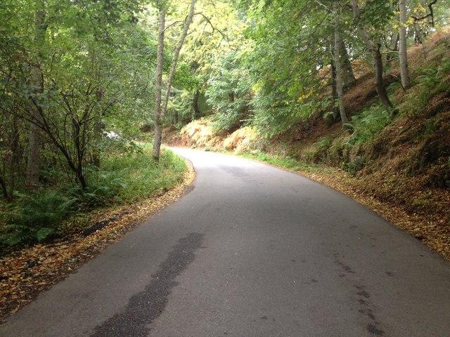Minor road near Maryburgh