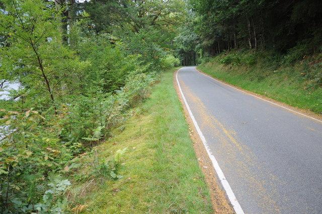Road below Coed yr Allt