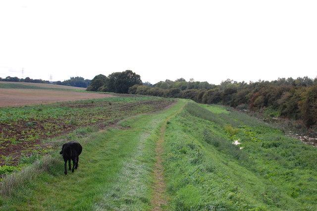 Bridleway by the Mar Dyke