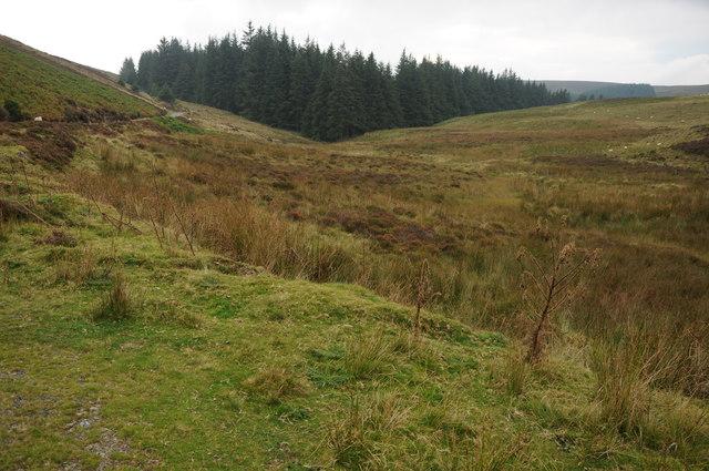 Moorland around Nant Nadroedd Fawr