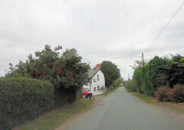Un-named lane east of Wern Farm