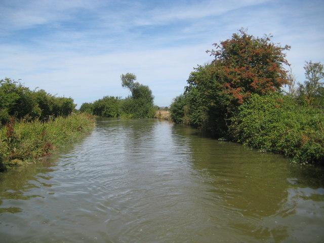 Grand Union Canal: Reach in Slapton (3)