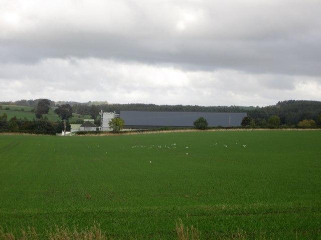 Arable land at Hazelrigg Mill