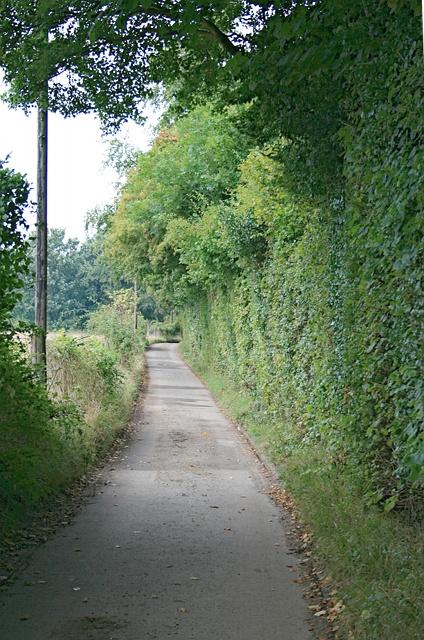 Blake's Lane