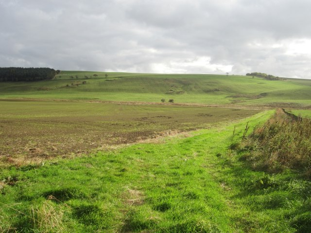 Arable land near the Hetton Burn