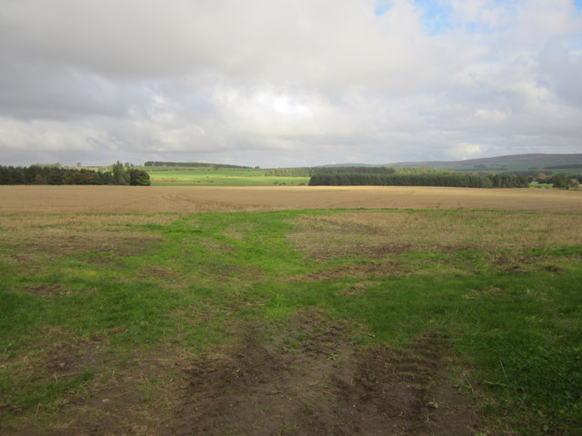 Looking across arable land towards The Letch