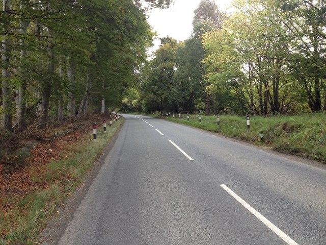 B817 near Skiach
