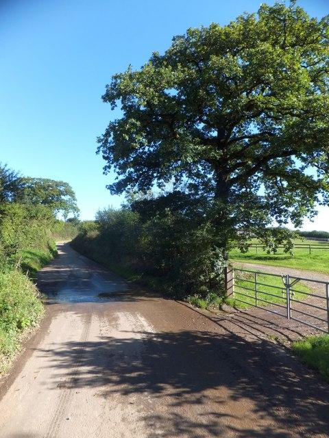 Runoff onto minor road near Nomansland