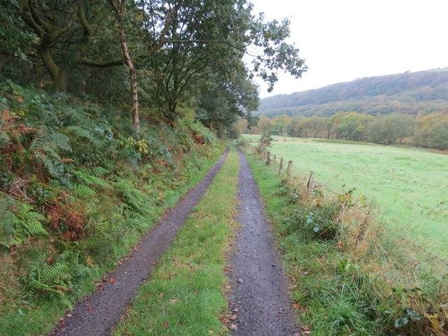 Heol Llwyn Erch Idwal Road