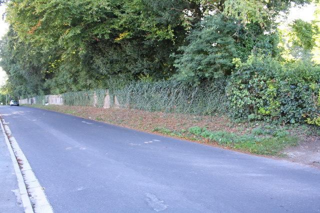 Syward Road