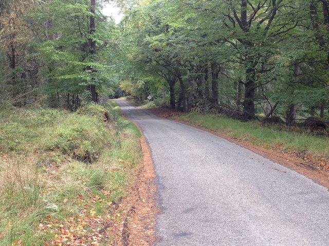 Minor road to Boath