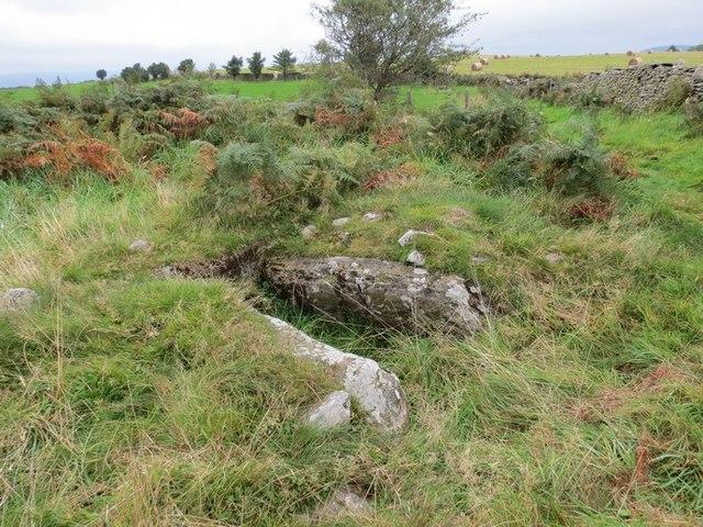 Cistfaen Mynydd Drumau
