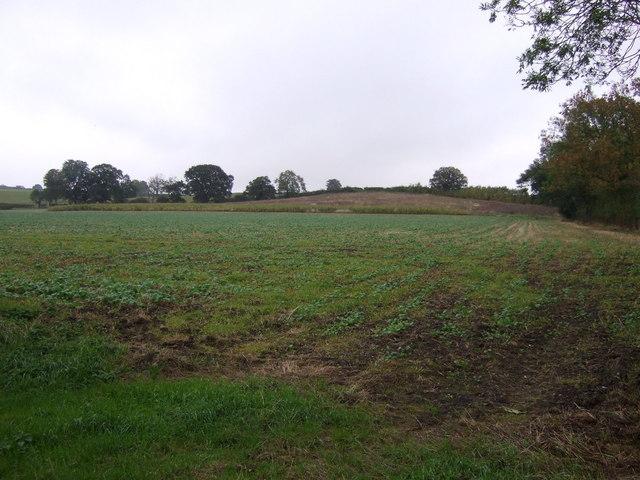 Farmland, Edenham