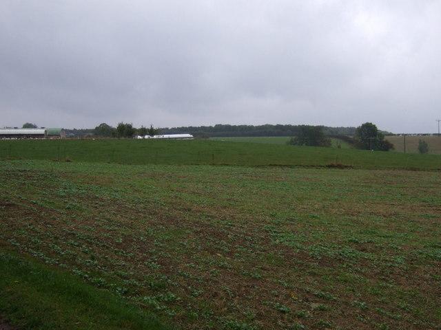Farmland, Home Farm