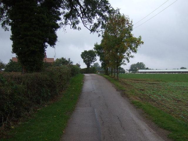 Track to Home Farm