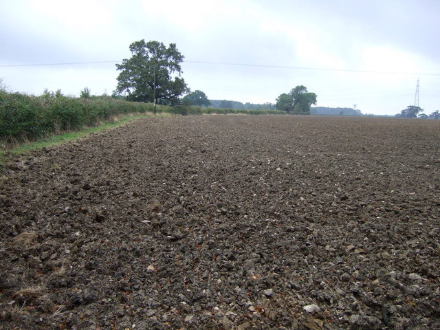Farmland north of the A151