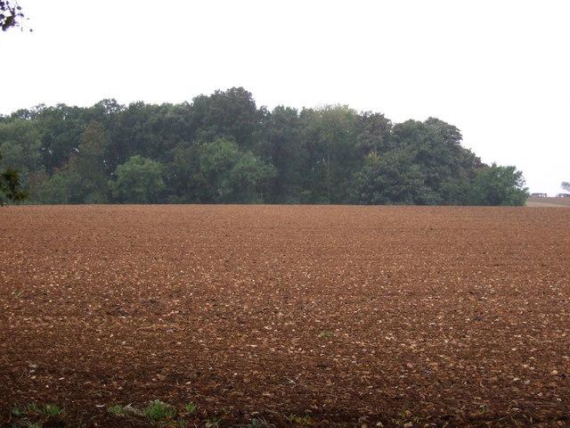 Farmland towards The Blockings