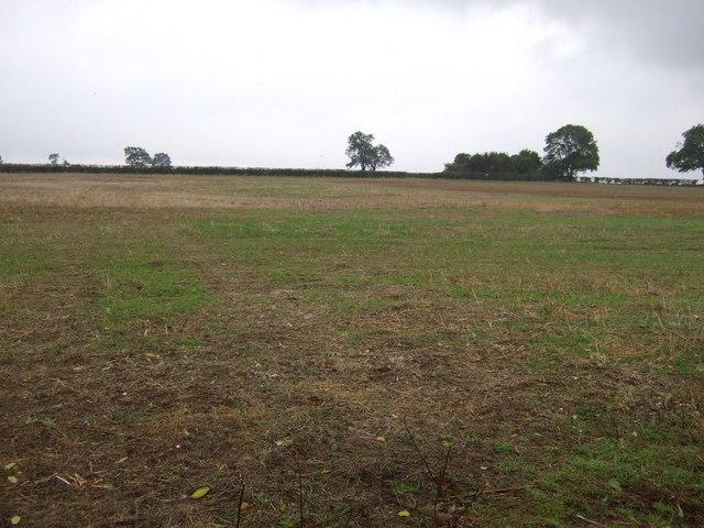 Farmland near Corby Glen