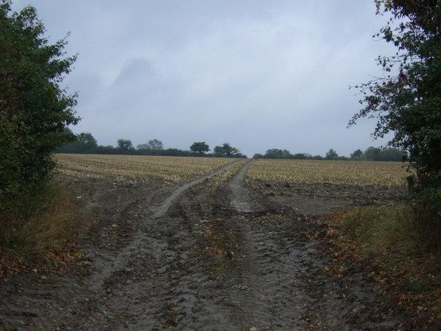 Track over fields near Corby Glen