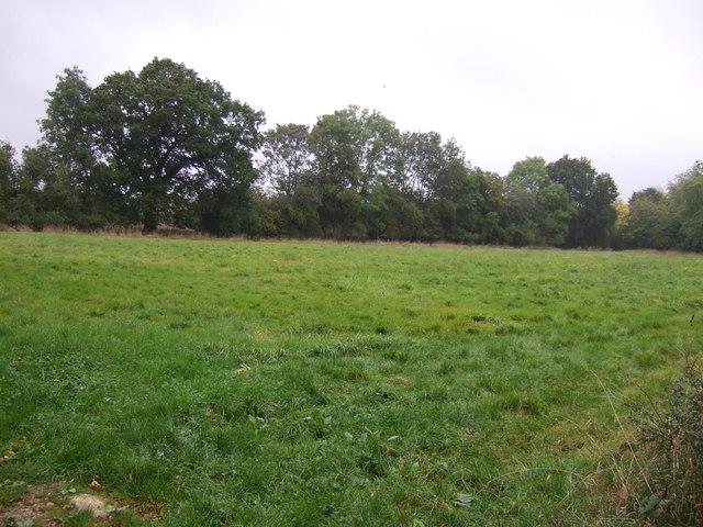 Farmland off Irnham Road