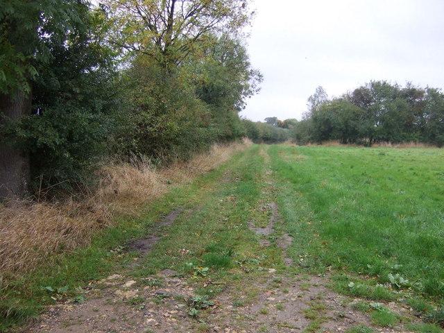 Farm track off Irnham Road