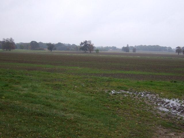 Farmland, Irnham Park