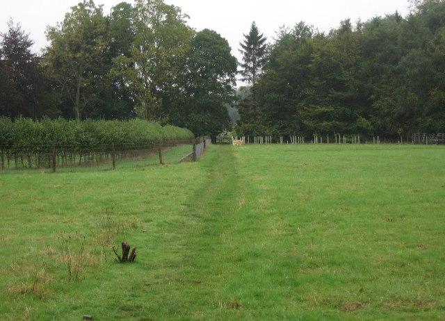 Path behind the village church