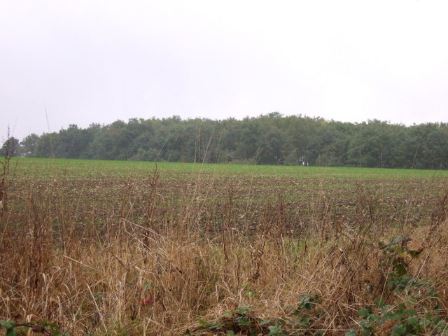 Farmland towards Hawthorpe Spinney
