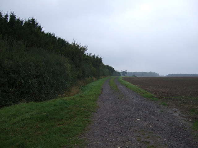 Track (bridleway) heading west