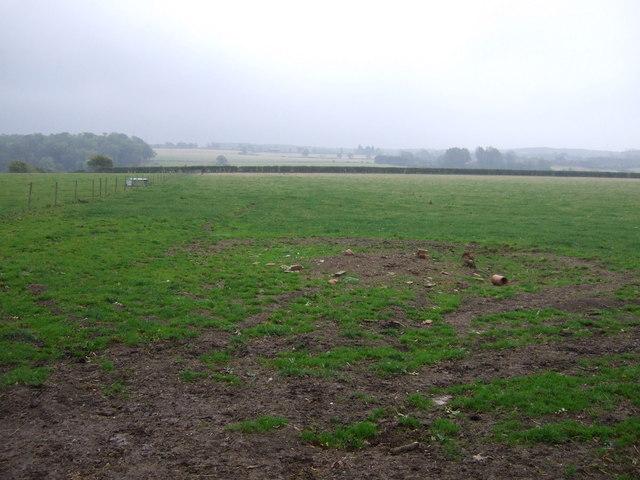 Farmland near Marwood House Farm
