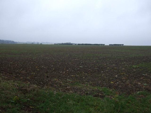 Farmland west of Bulby