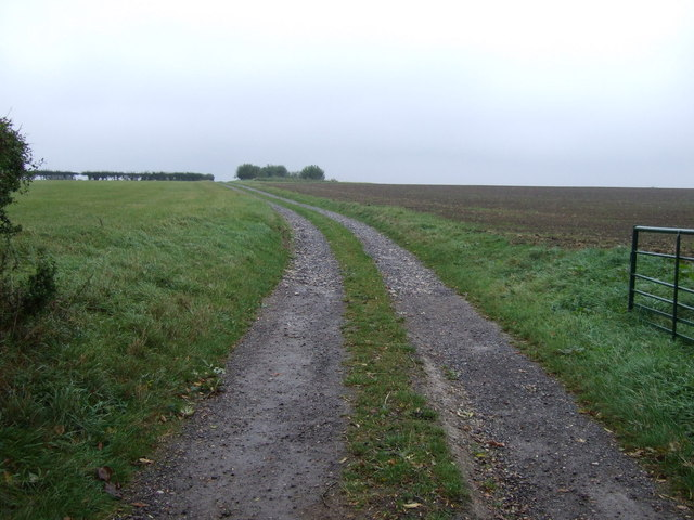 Farm track west of Bulby