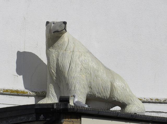 An 8 ft polar bear in Bridge Street
