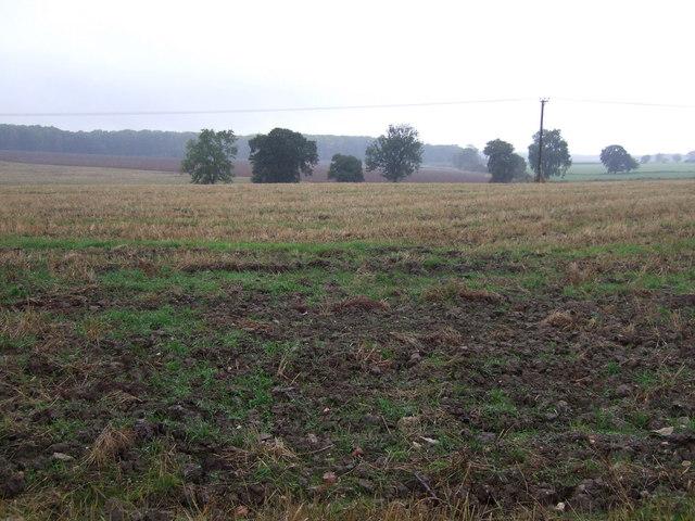 Farmland north of Kirkby Underwood