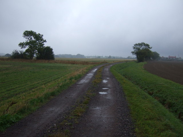 Track towards Littleworth Barn