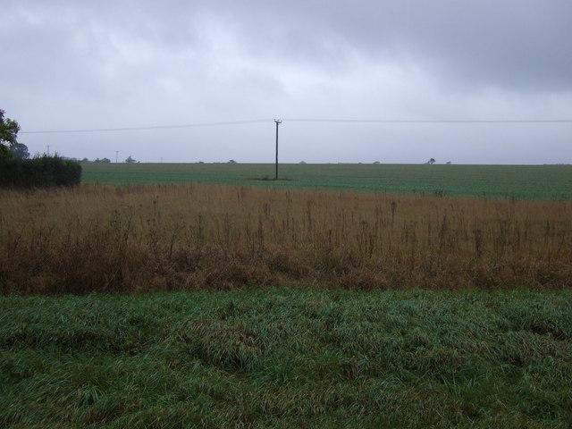 Farmland near High Park Farm