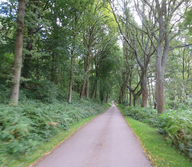 Chirk Castle - visitor exit through Garden Wood