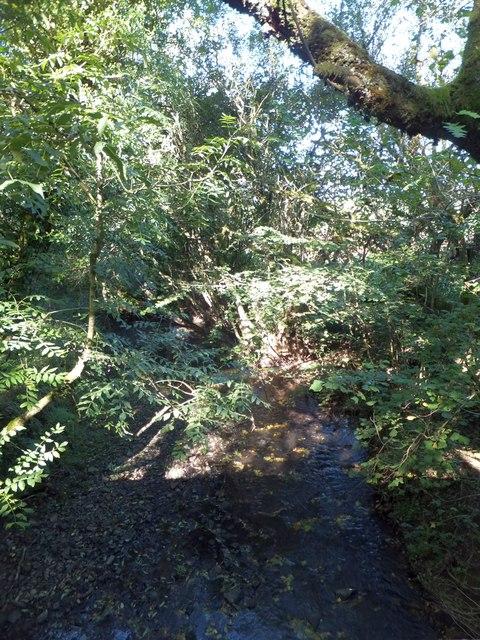 River Dalch south of Nomansland