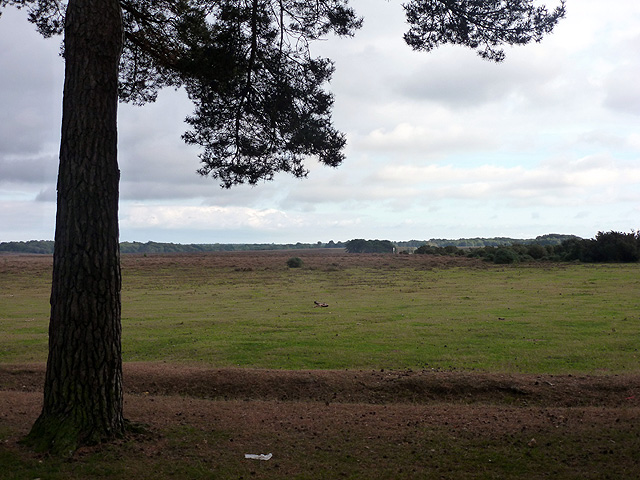 A view over Yew Tree Heath from Beaulieu Road