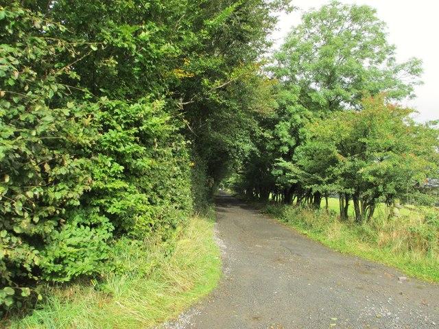 A track to Morton Castle