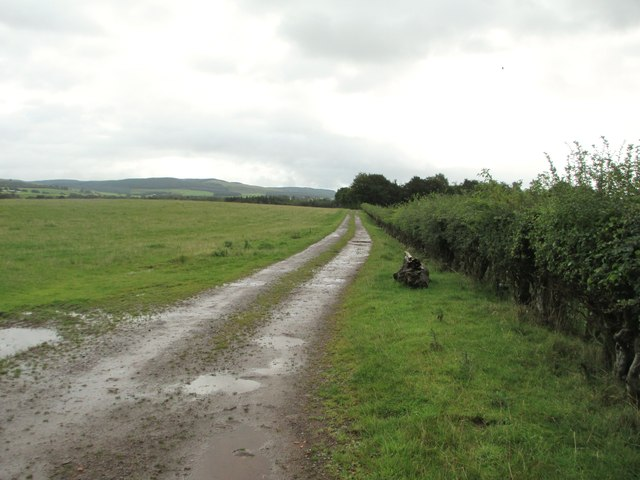 A track across the fields